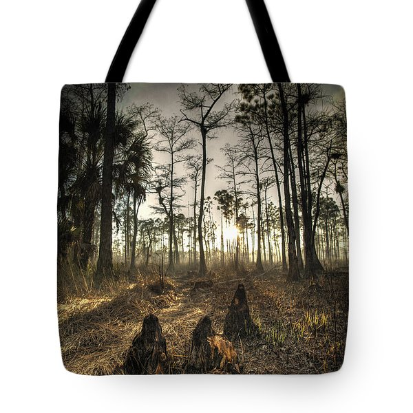 Cypress Stumps And Sunset Fire Tote Bag by Bradley R Youngberg