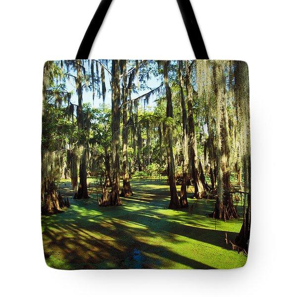 Cypress Swamp Tote Bag