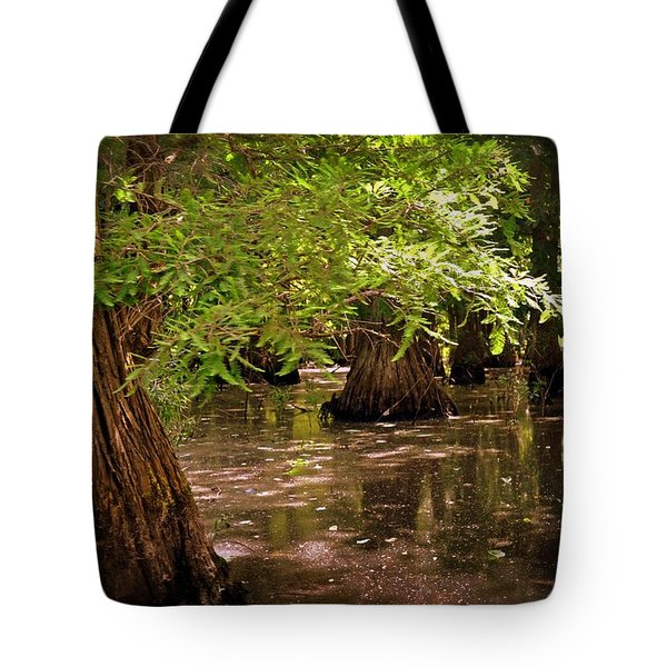 Cypress Swamp Tote Bag by Marty Koch
