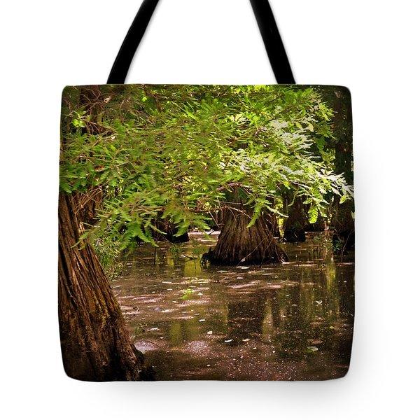 Cypress Swamp Tote Bag by Marty Koch