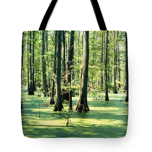 Cypress Trees In A Forest, Shawnee Tote Bag