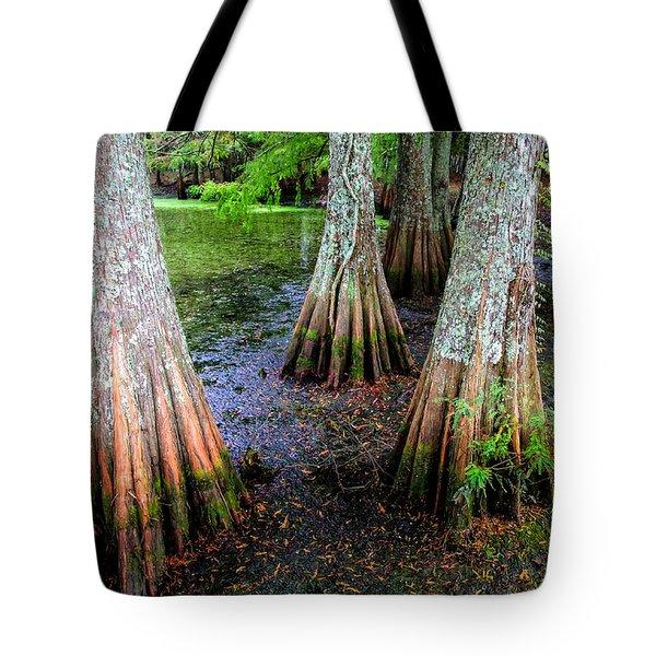 Cypress Waltz Tote Bag by Karen Wiles