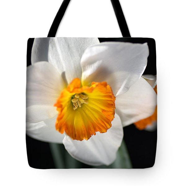 Daffodil In White Tote Bag by Joy Watson