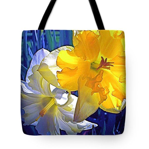 Tote Bag featuring the photograph Daffodils 1 by Pamela Cooper