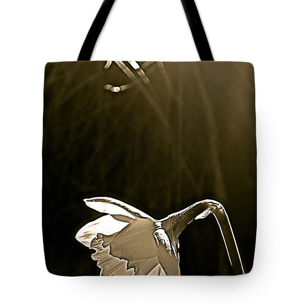 Tote Bag featuring the photograph Daffodils 2 by Pamela Cooper