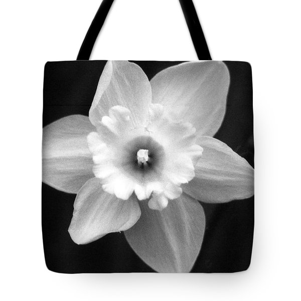 Daffodils - Infrared 01 Tote Bag