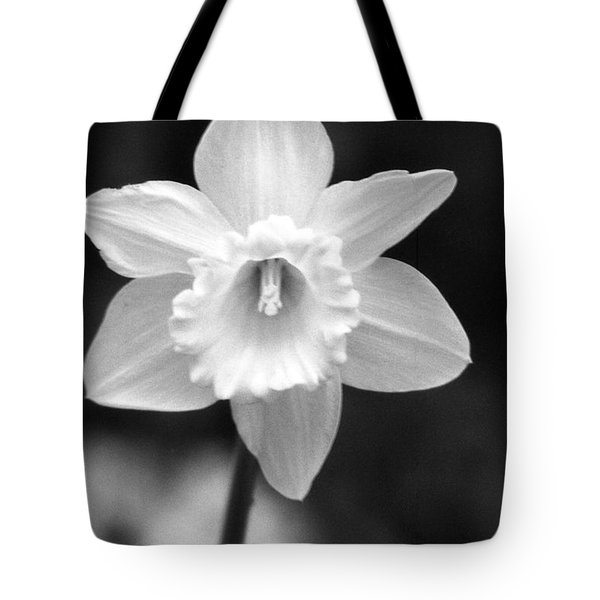 Daffodils - Infrared 10 Tote Bag