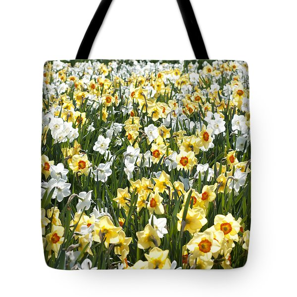 Tote Bag featuring the photograph Daffodils by Lana Enderle