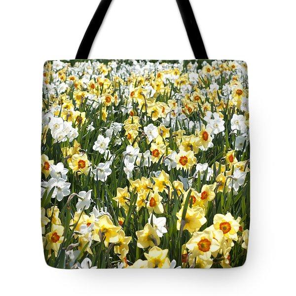 Daffodils Tote Bag by Lana Enderle