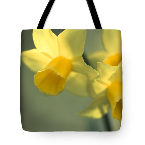 Daffy-down-dilly  Tote Bag
