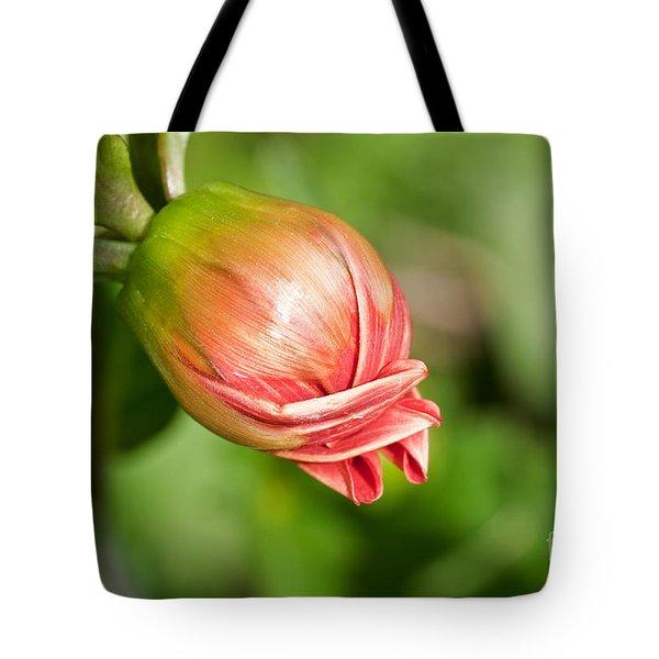 Dahlia Bud Tote Bag