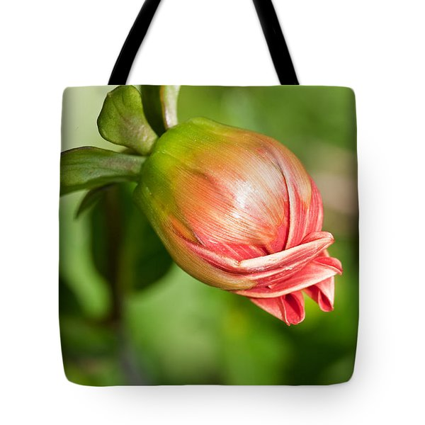 Tote Bag featuring the photograph Dahlia Bud by Sue Smith