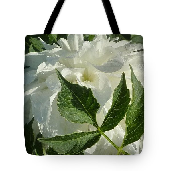 Tote Bag featuring the photograph Dahlia Delicate Dancer by Susan Garren
