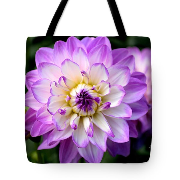 Dahlia Flower With Purple Tips Tote Bag