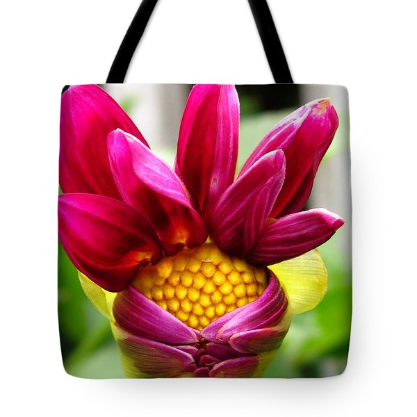 Tote Bag featuring the photograph Dahlia From The Showpiece Mix by J McCombie