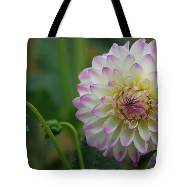 Dahlia In The Mist Tote Bag