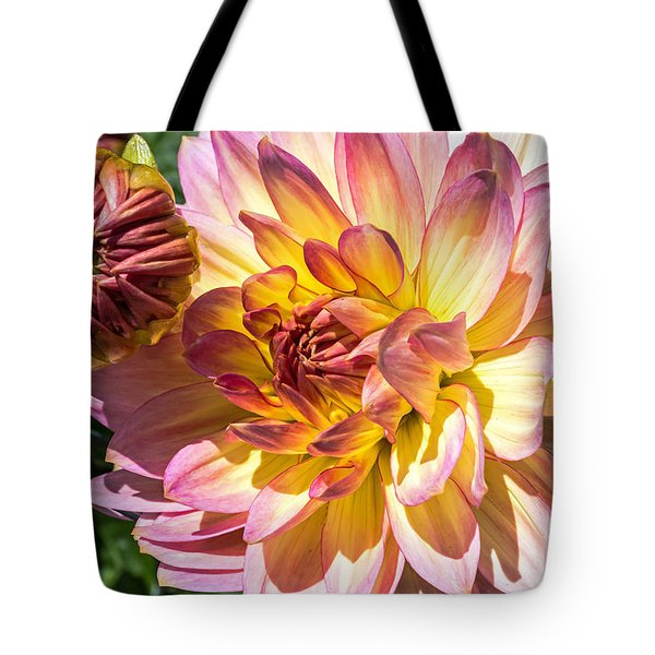 Tote Bag featuring the photograph Dahlia by Kate Brown