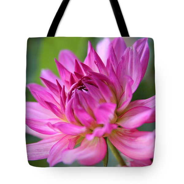 Dahlia Tote Bag by Lynn England