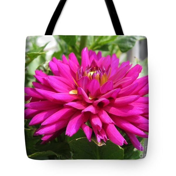 Tote Bag featuring the photograph Dahlia Named Andreas Dahl by J McCombie