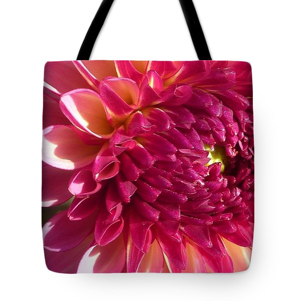 Tote Bag featuring the photograph Dahlia Pink 1 by Susan Garren
