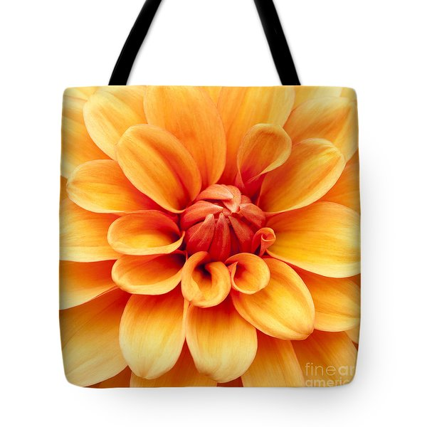 Dahlia Squared Tote Bag by Anne Gilbert