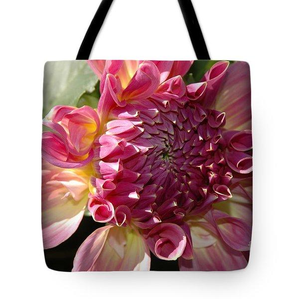 Dahlia V Tote Bag by Christiane Hellner-OBrien