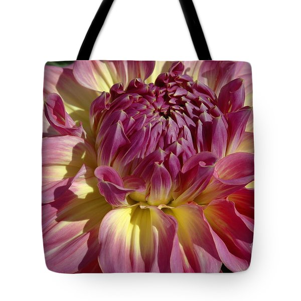 Tote Bag featuring the photograph Dahlia Vii by Christiane Hellner-OBrien