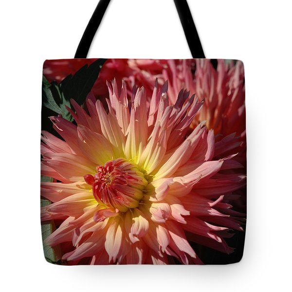 Tote Bag featuring the photograph Dahlia Viii by Christiane Hellner-OBrien
