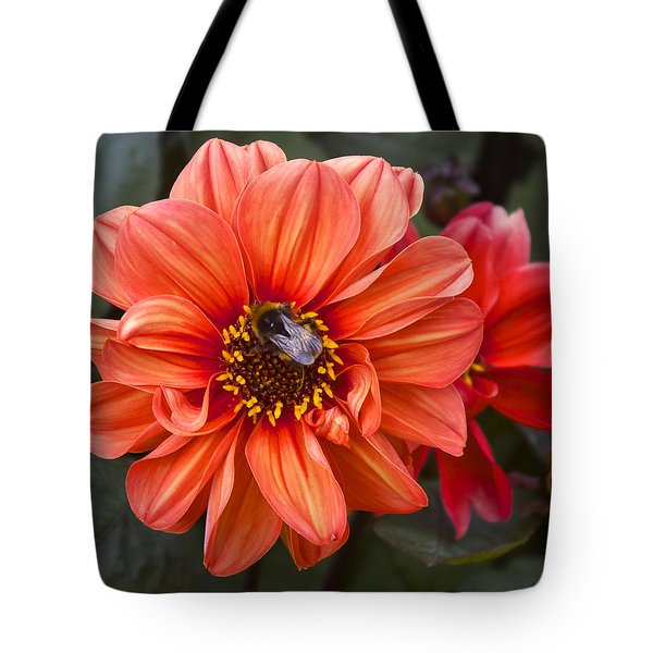 Dahlia With Bee Tote Bag by Venetia Featherstone-Witty