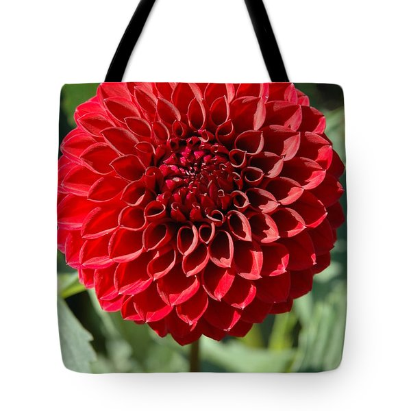 Tote Bag featuring the photograph Dahlia Xii by Christiane Hellner-OBrien
