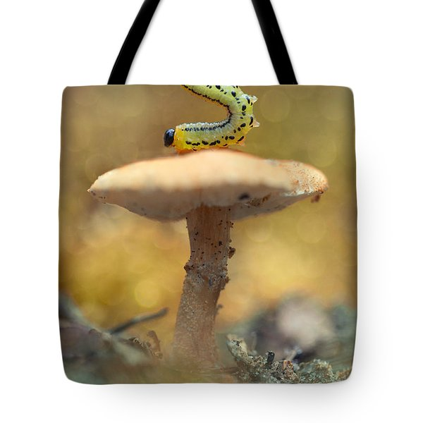 Daily Excercice Tote Bag