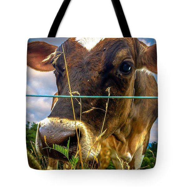 Dairy Cow Tote Bag by Bob Orsillo