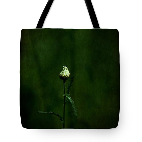 Daisey Tote Bag by Simone Ochrym