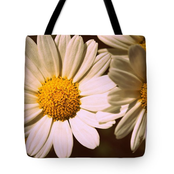 Daisies Tote Bag by Chevy Fleet