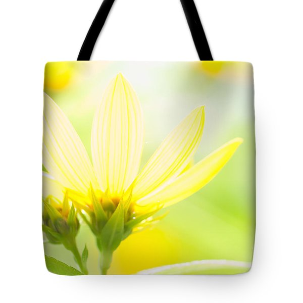 Daisies In The Sun Tote Bag
