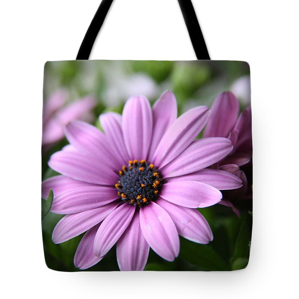 Daisies Tote Bag by Lynn England