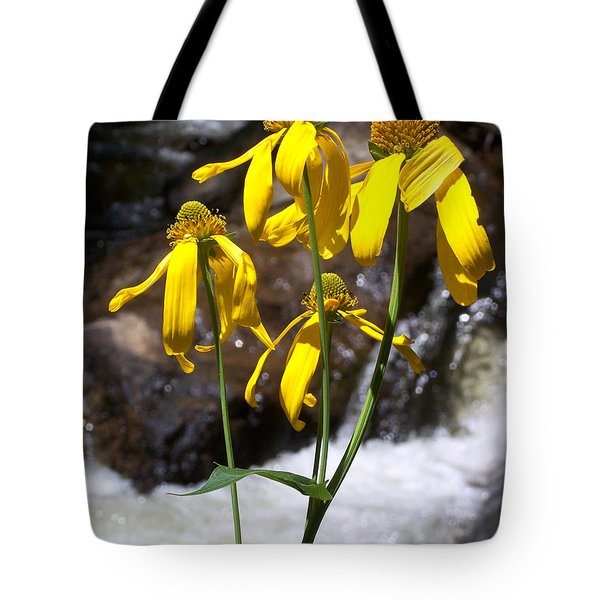 Daisies Near The Water  Tote Bag