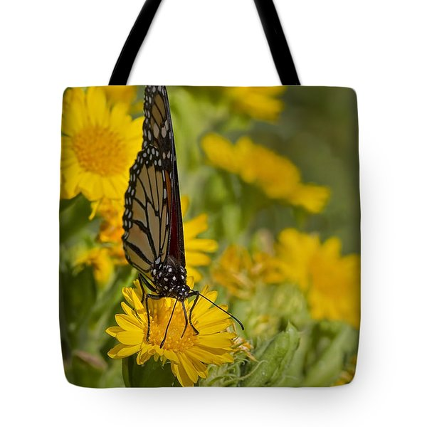 Tote Bag featuring the photograph Daisy Daisy Give Me Your Anther Do by Gary Holmes