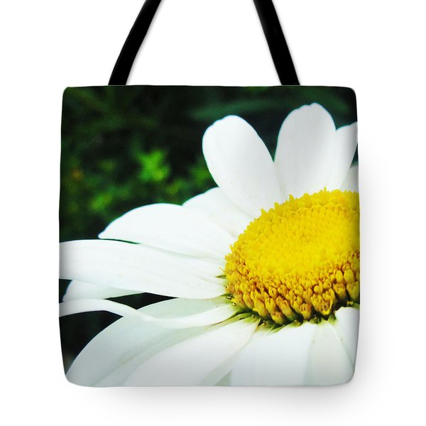 Tote Bag featuring the photograph Daisy Daisy by Tiffany Erdman
