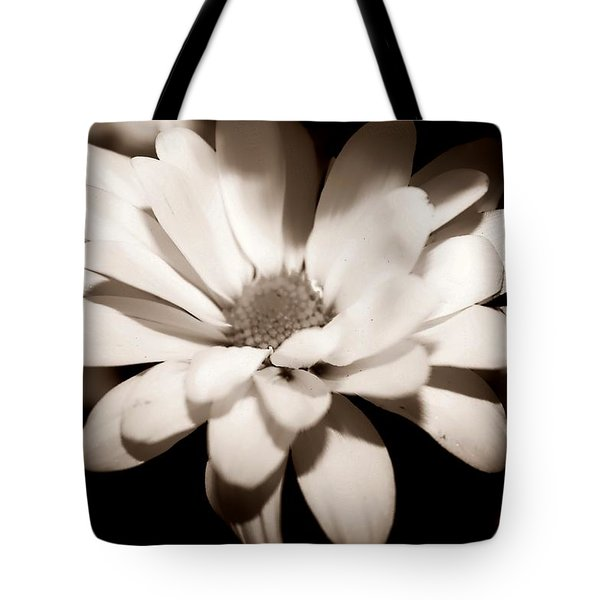 Tote Bag featuring the photograph Daisy by Debra Forand