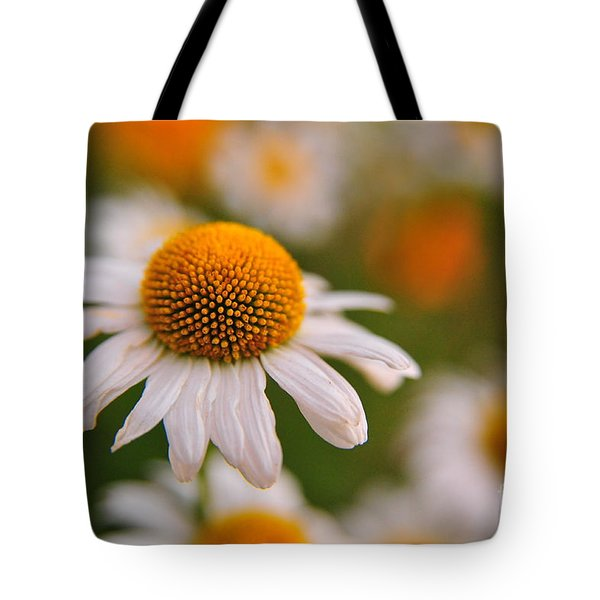 Daisy Power Tote Bag by Terri Gostola
