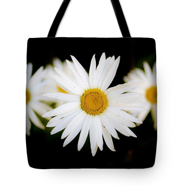 Daisy Trio Tote Bag