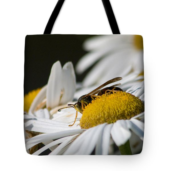 Tote Bag featuring the photograph Daisy With Friend by Greg Graham