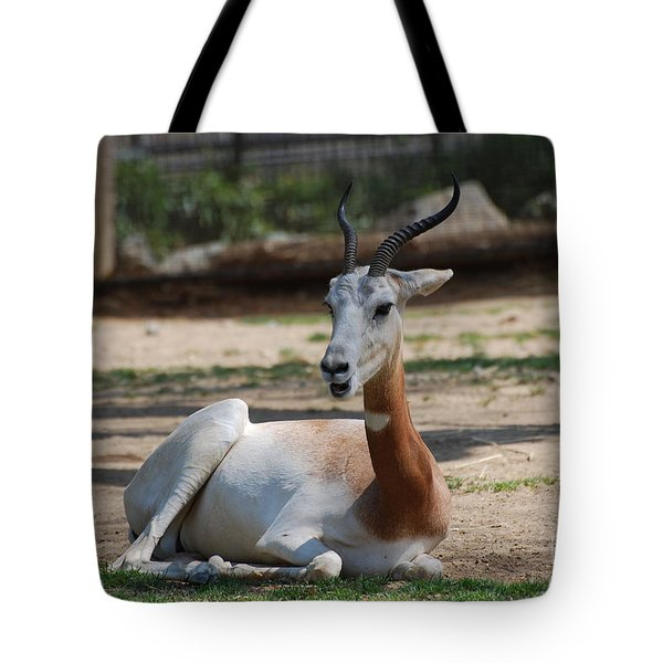 Dama Gazelle Tote Bag by DejaVu Designs