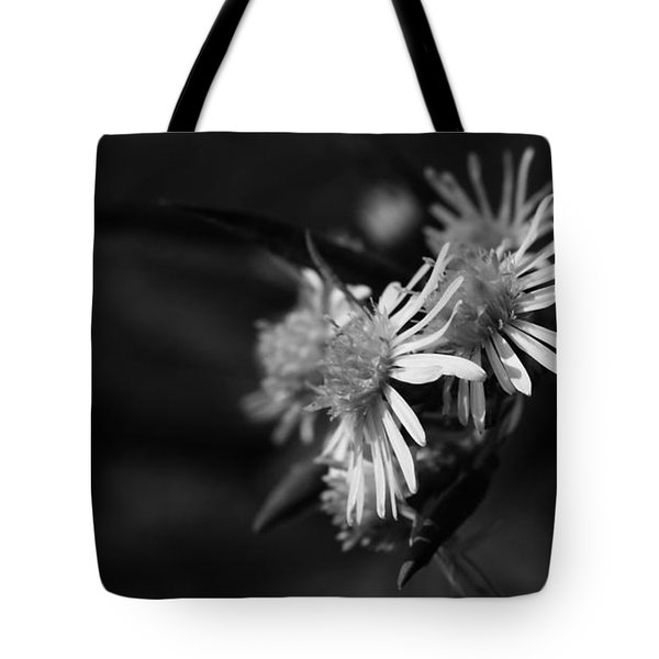 Tote Bag featuring the photograph Dames En Noir by Linda Shafer