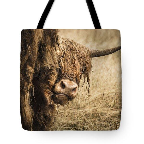 Highland Cow Damn Fleas Tote Bag