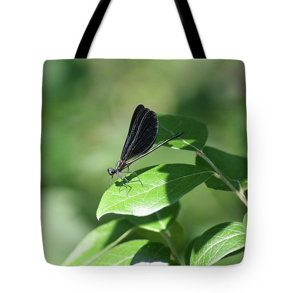 Tote Bag featuring the photograph Damselfly  by Karen Silvestri