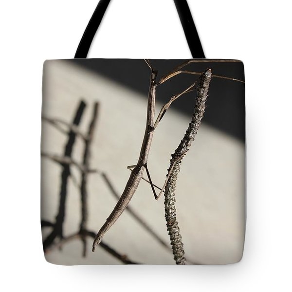 Dance Tote Bag by Betty Northcutt