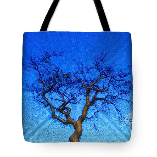 Dance Of The Dawn Tote Bag by Anne Mott