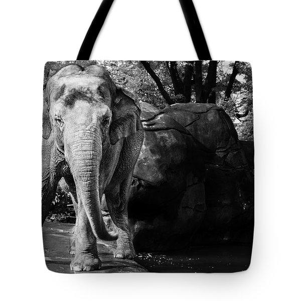 Dancing Elephant Tote Bag